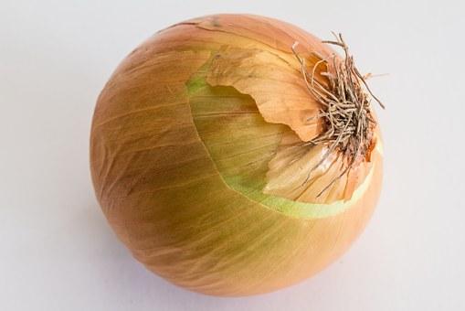 cream-onion-885923__340.jpg