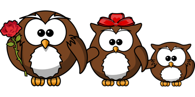 owl-158418__340.png