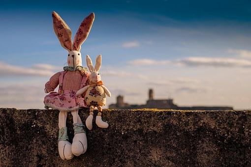 rabbit-1158594__340