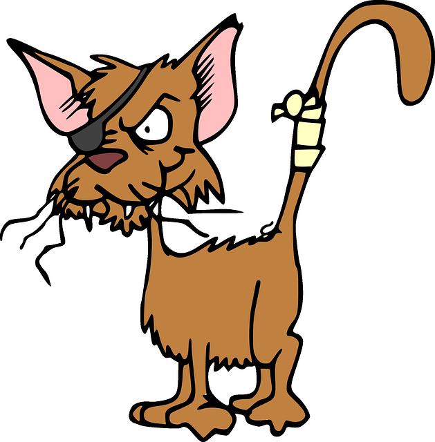 cat-47896_640.png