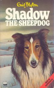 shadow-the-sheep-dog-2.jpg