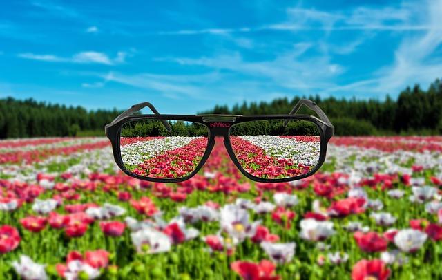 spectacles-95615_640.jpg