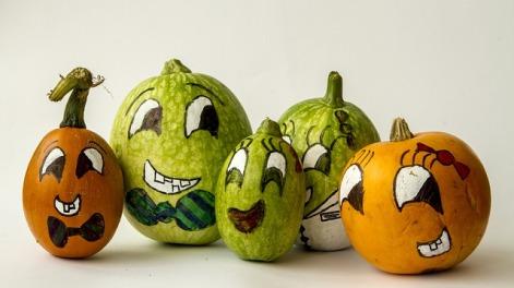 pumpkins-1766725_640