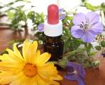 natural-medicine-1738161_640