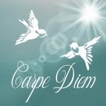 carpe-diem-881082_640