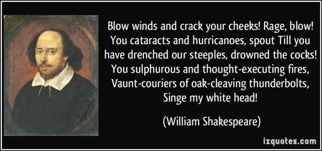 quote-blow-winds-and-crack-your-cheeks-rage-blow-you-cataracts-and-hurricanoes-spout-till-you-have-william-shakespeare-310420.jpg