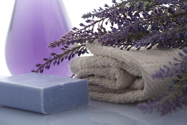 lavender-3066531_640.jpg